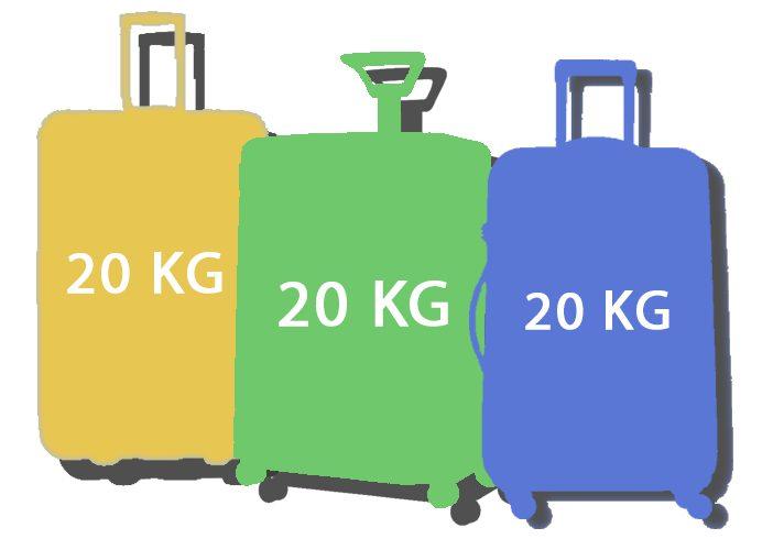 koffer voor 20 kg bagage